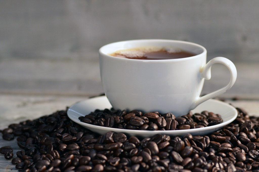 Produção pode chegar a 58 milhões de sacas — CAFÉ