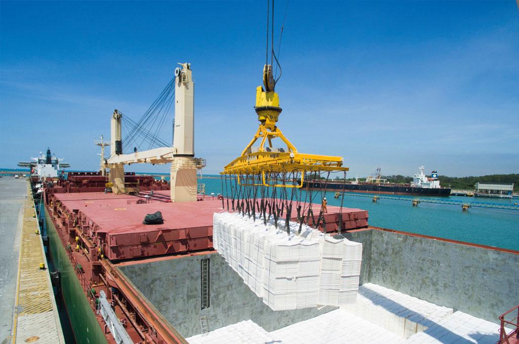 Portocel celebra 40 anos e investe R$ 85 milhões em obras